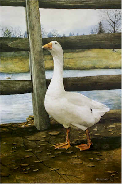 Portrait of a Goose Santoleri limited Edition Print from Watercolor Painting