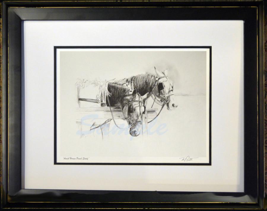 Framed Amish Horses